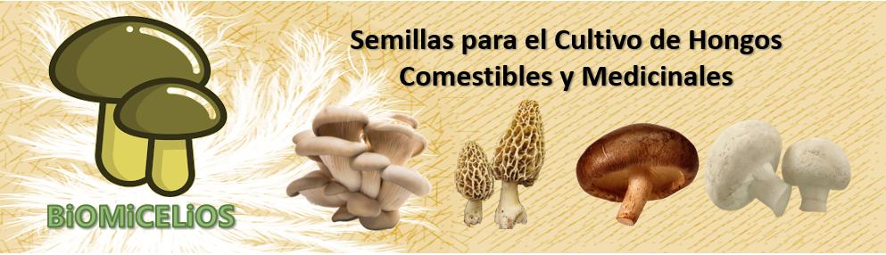 Biomicelios Logo